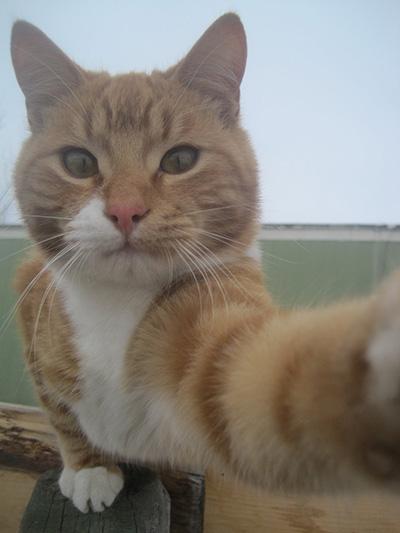 selfie_6